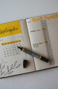 Calendari attività